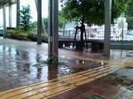 雨〜20090528弐