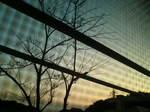 夕景〜20091016