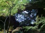 御橋観音寺〜20091116弐