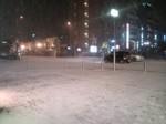 雪景色〜20110117弐