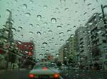 雨〜20110625