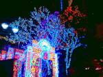 Christmas Eve〜20111224
