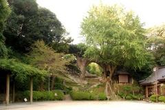 眼鏡岩〜20111009-21-01