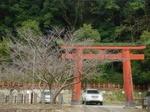 さくらプロジェクト2012始動〜20120224壱