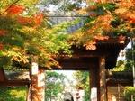 円覚寺〜20121119-1121
