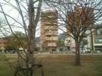 ソライロ〜20121216樹