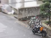雪〜20120218