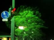 夜景〜20130915