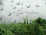 雨〜20131005
