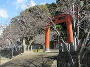 神社にて〜20131213