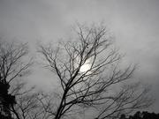 ソライロ〜20131216