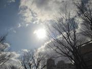 夕景〜20131219
