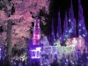 MerryChristmas〜20131225