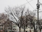 夕景〜20131226