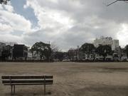 夕景〜20131227
