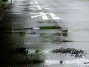 雨〜20060518