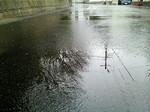雨〜20070220