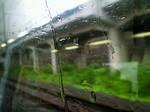 雨〜20070530
