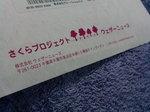 桜バンダナ〜20080319-1