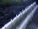 水〜20080629