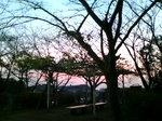 夕景〜20081213