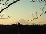 夕景〜20081227
