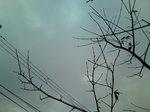 曇り空〜20090121