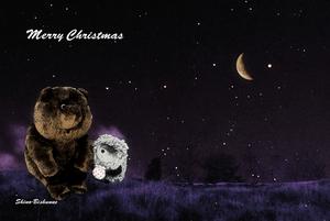 2007Merry Christmas〜20071225(1)