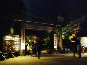 たまゆらの夕べ〜20131116-1117