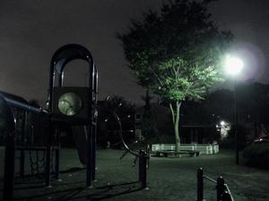 夜の公園〜20060915(3)