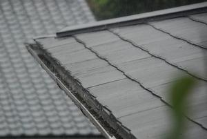 雨〜20070829(2)
