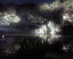 ク・ナウカ『オセロー』〜20051113(1)
