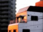 夕景〜20130210