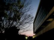 夕景〜20130222