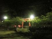 夜景〜20130412