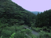蛍狩り〜20130606-0607