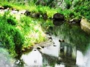 水の風景〜20130719