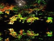 ソライロの日/たまゆらの夕べ〜20131116