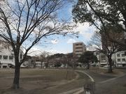 夕景〜20131129