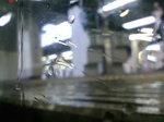 雨〜20070906